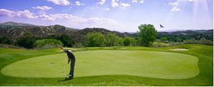 best putters high handicappers