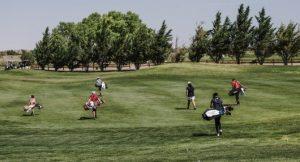 best golf ball beginner