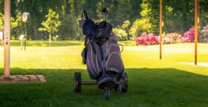 golf cart reviews