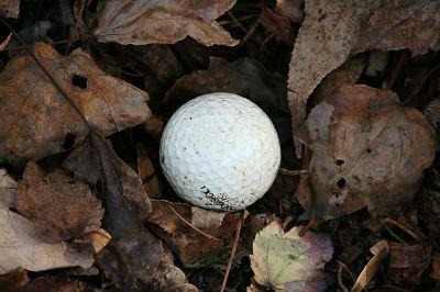 golf balls grabber